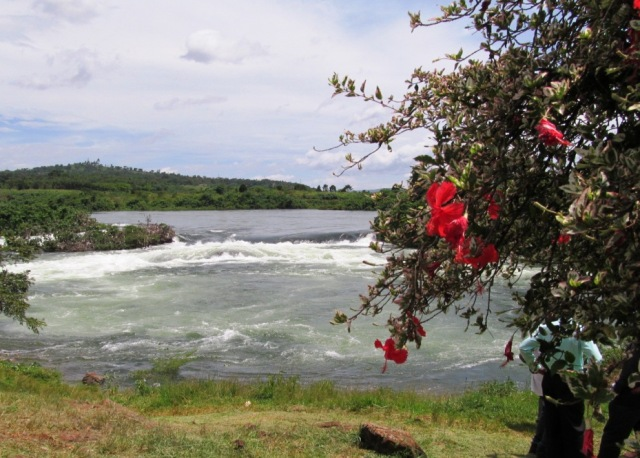The White Nile begins at Jinja, Uganda